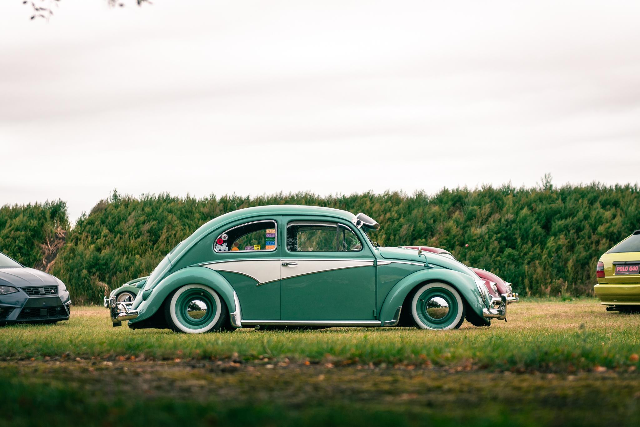 DND-beetle2