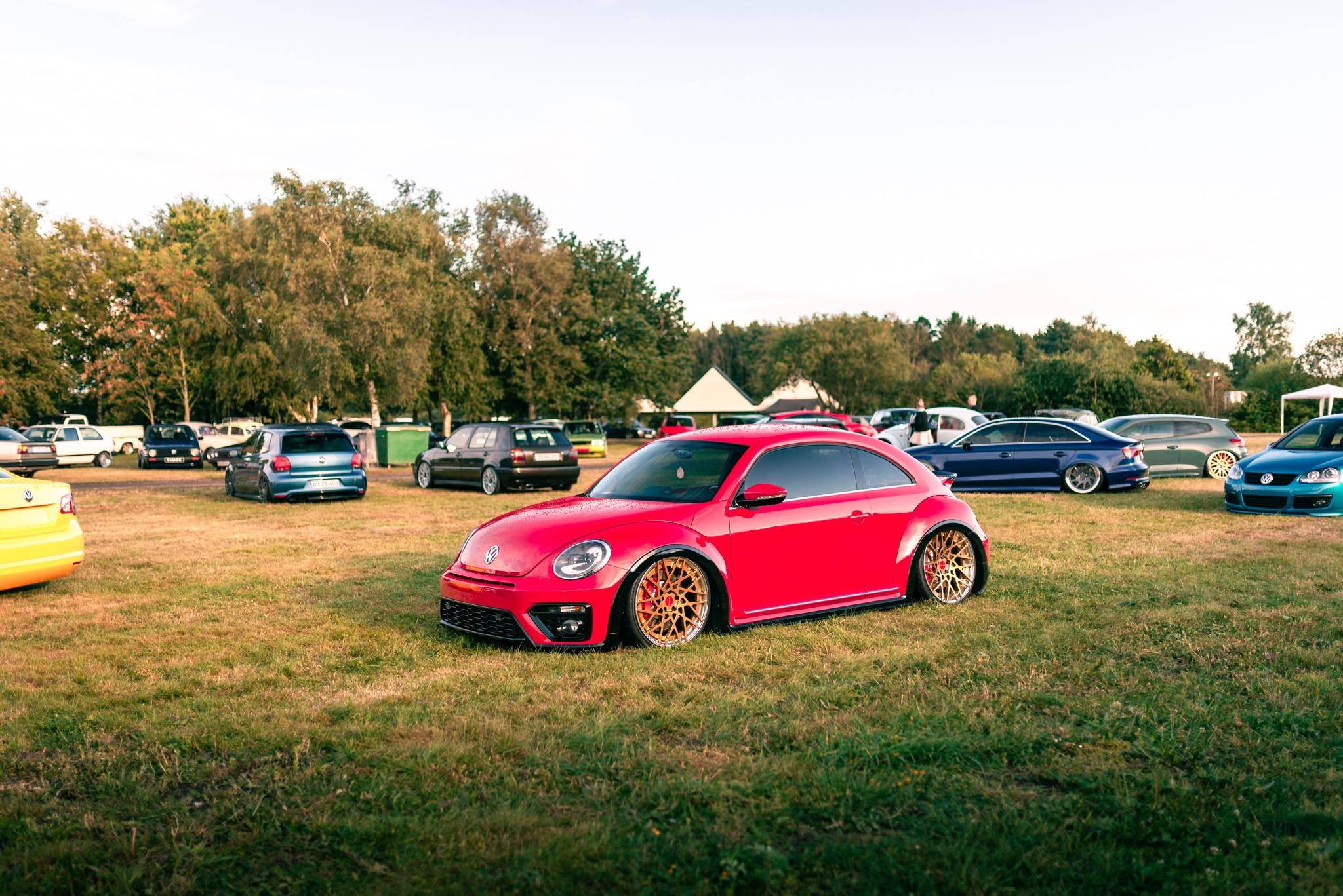 DND-beetle